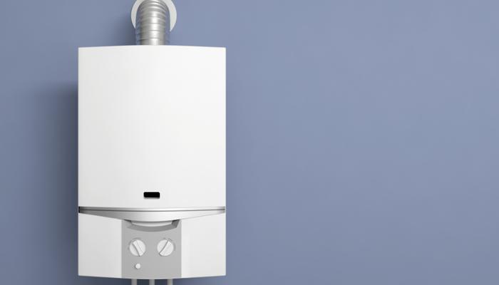 Entretien chaudière gaz murale basse température 125€