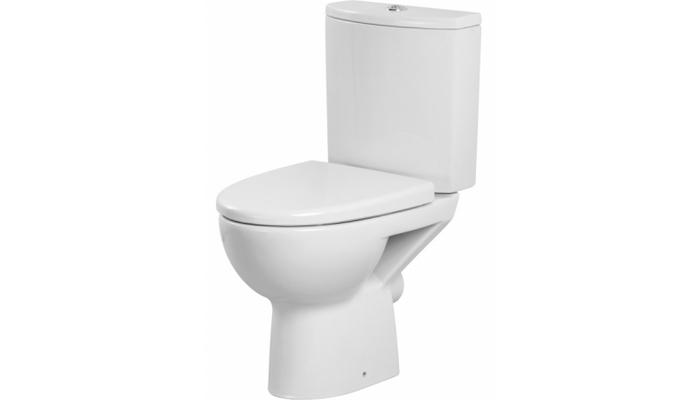 Remplacement WC au sol 450 euros 450€