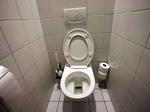 Débouchage de toilette sur Paris 180€